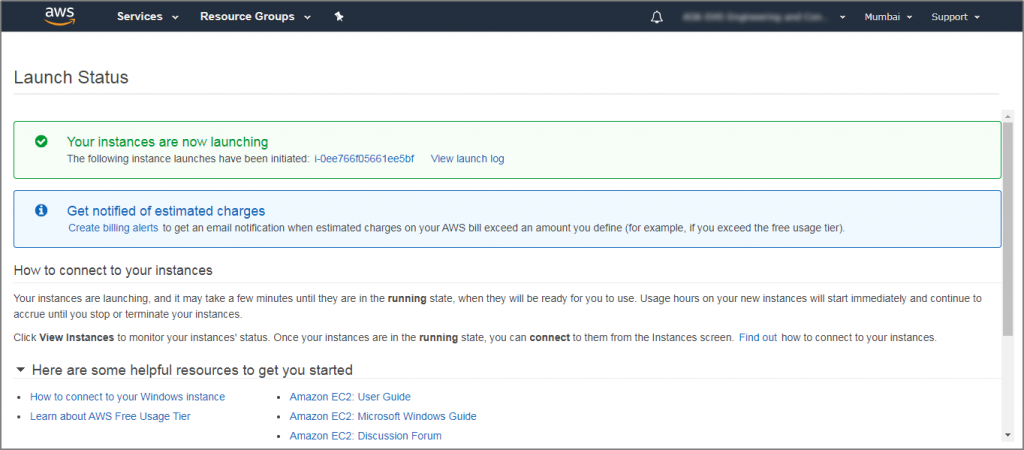 The 'Launch Status' page is displayed.
